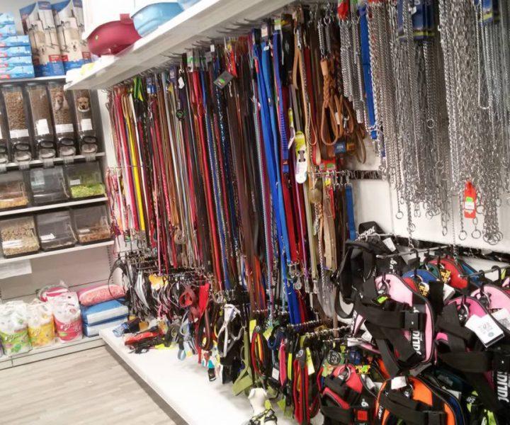 accessori-per-animali-villafranca5